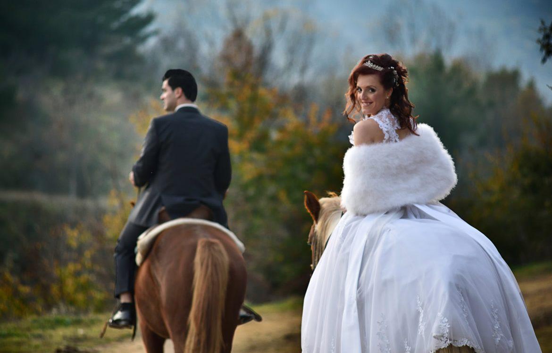 6-horse-wedding-photos-06