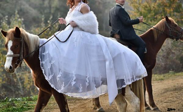 6-horse-wedding-photos-c